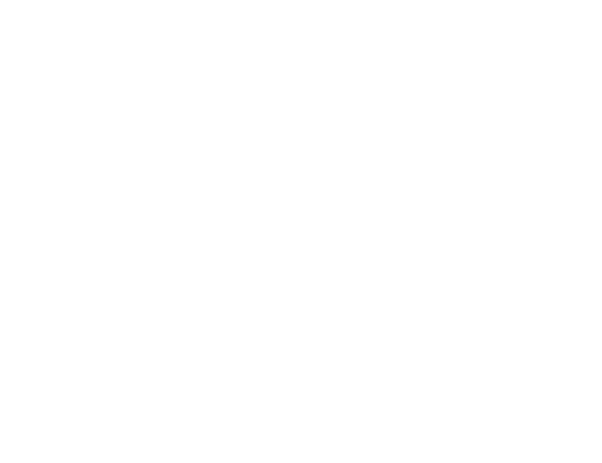 C&A – Segmentos